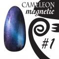 Chameleon Magnetici Cat Eye